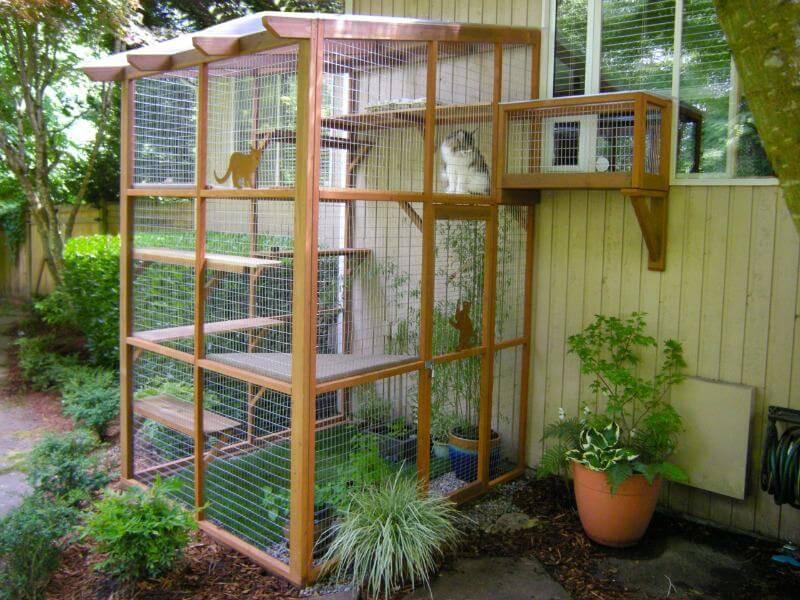 Cat patio DIY
