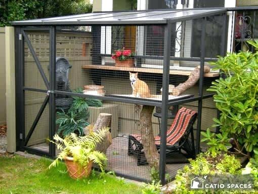 Large sit-in catio